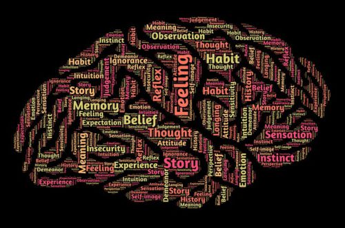 introducing neuro linguistic programming brain with various words