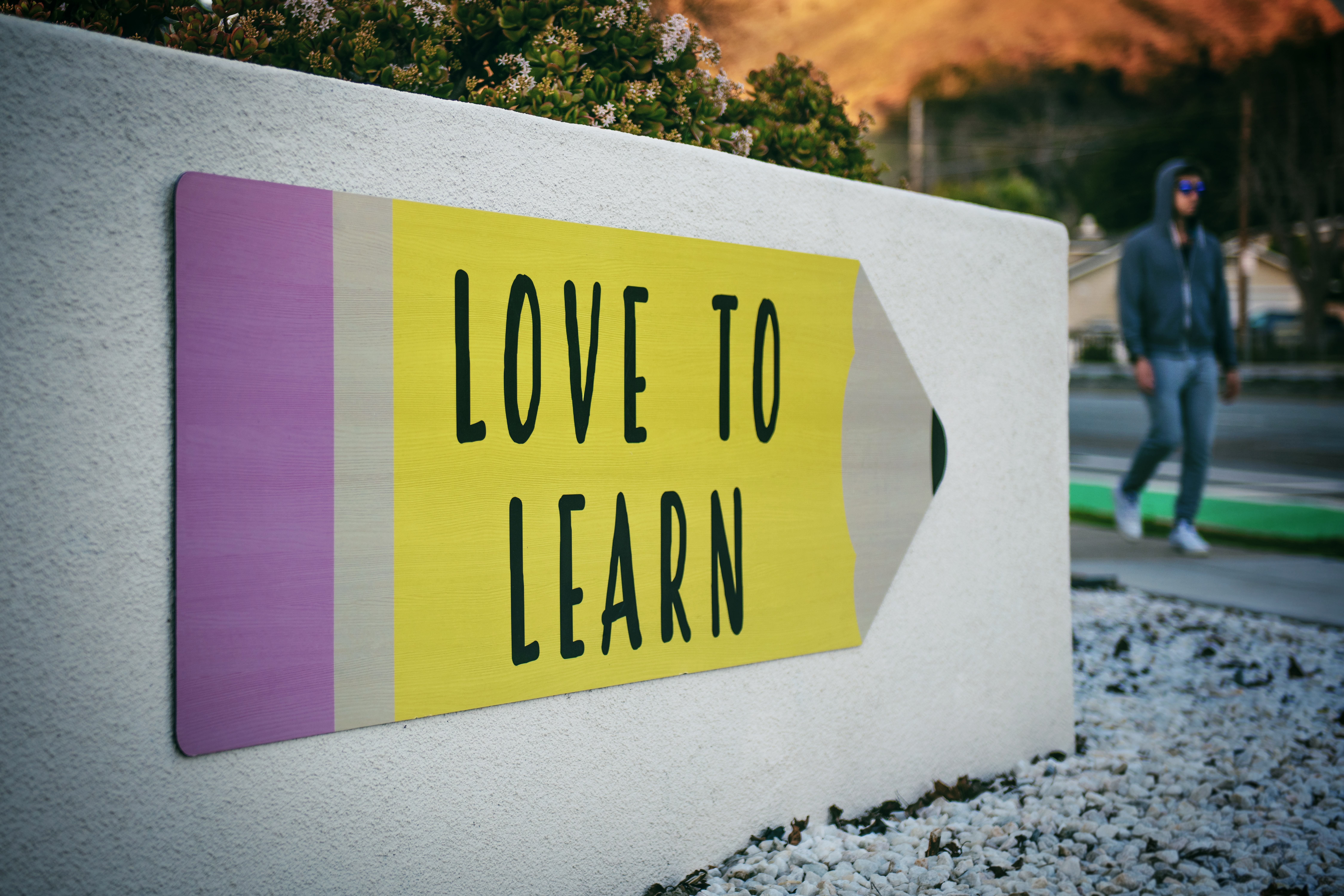international schools sign love to learn